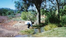 koroit-opal-mine-The bore drain at Yowah near Koroit