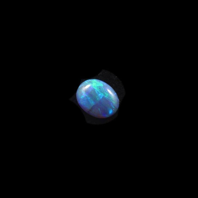 0070-black-opal-2