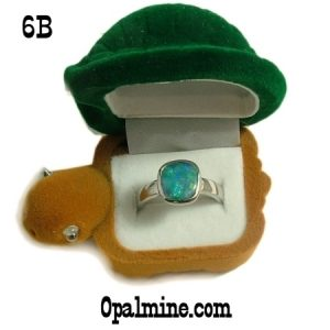 opal ring gift boxes-turtle shaped ring box