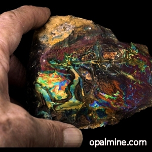 8514-opal-specimen-boulder opal-